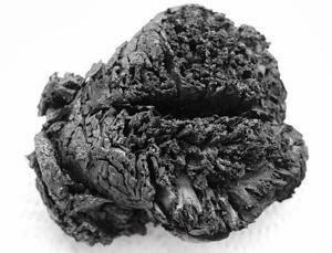 Cérebro fervido no próprio crânio continua intacto após 4000 anos
