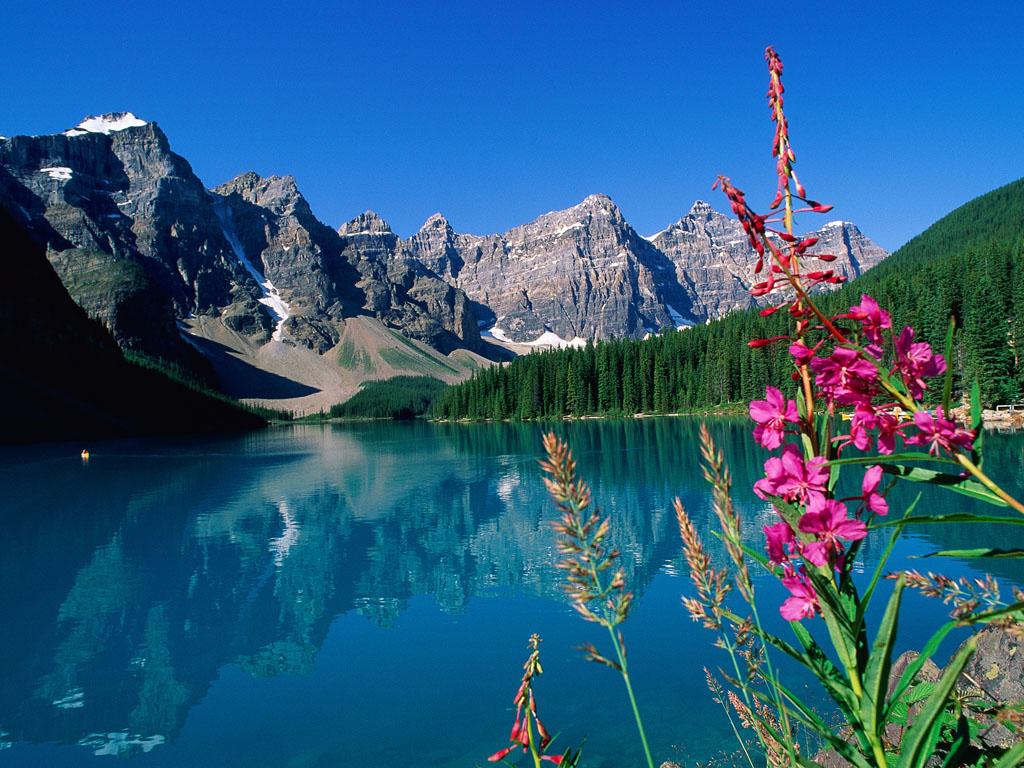 De acordo com estudo, admirar a natureza faz com que as pessoas acreditem mais em Deus