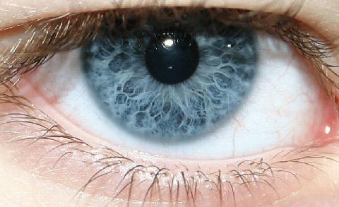 """Cientistas """"imprimem"""" células do olho"""
