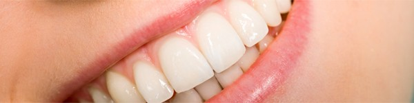 Dentes são ossos?