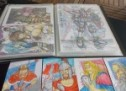 Desenhos de mangás chamam a atenção na Feira do Livro