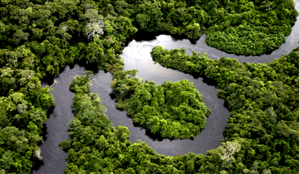 Observatório produz dados estratégicos sobre clima na Floresta Amazônica