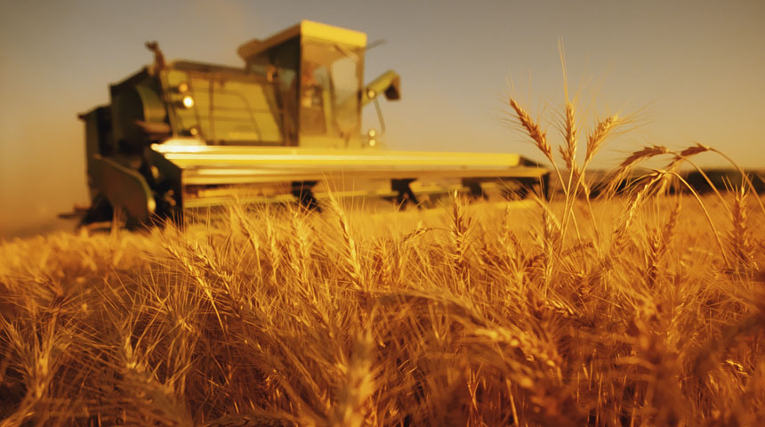 Agronegócio registra saldo comercial de US$ 7,4 bilhões em setembro