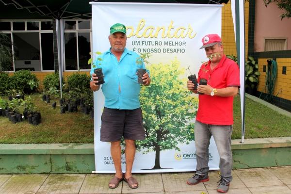 Cermoful comemora o Dia da Árvore com distribuição de mudas