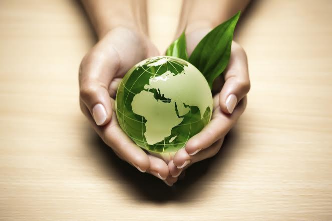 Restauração Ambiental é tema de encontro na Unesc