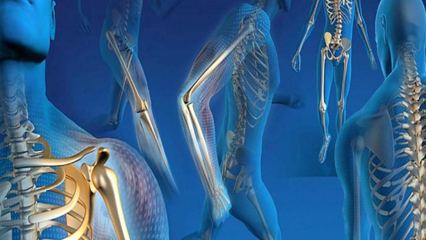 Em cinco anos, Into reduz pela metade fila de espera para cirurgias ortopédicas