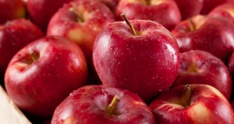 Brasil vai exportar maçã fresca para a Índia