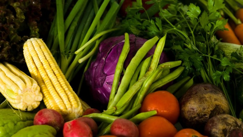 Exército compra alimentos da agricultura familiar em Roraima e Pernambuco