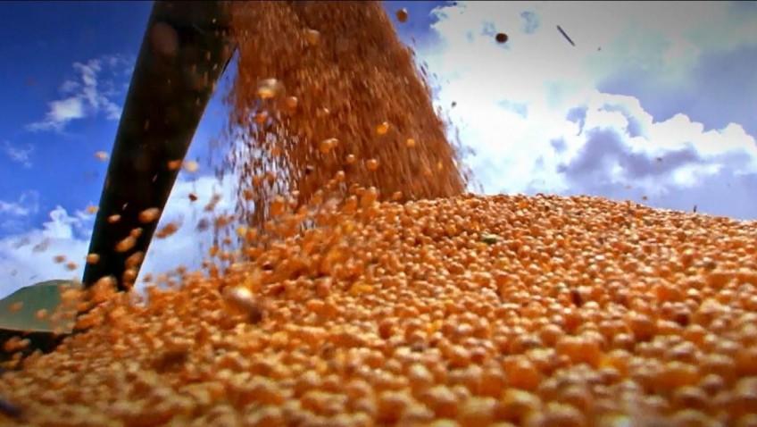 Colheita de grãos na safra 2017/2018 é a segunda maior da história