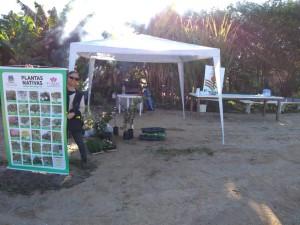 23-06-2018_Horta Comunitária de Vila Rica (2)