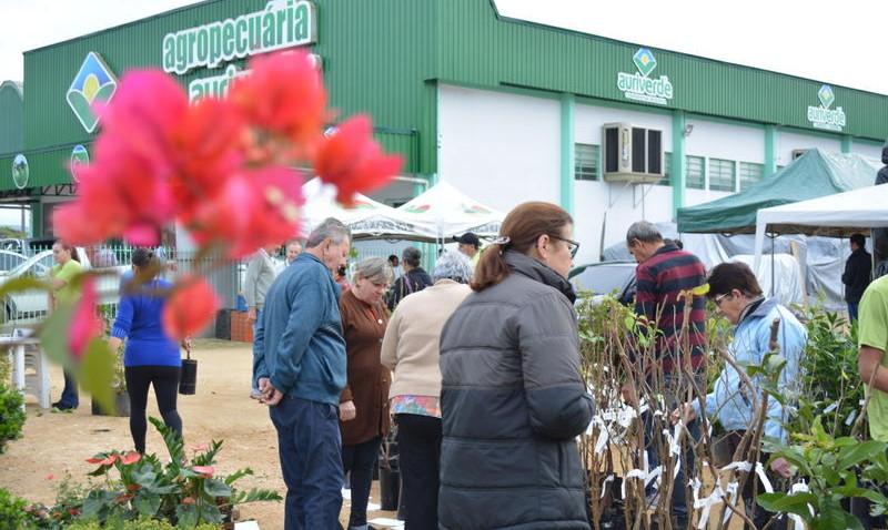 Mais de mil mudas são comercializadas em feira