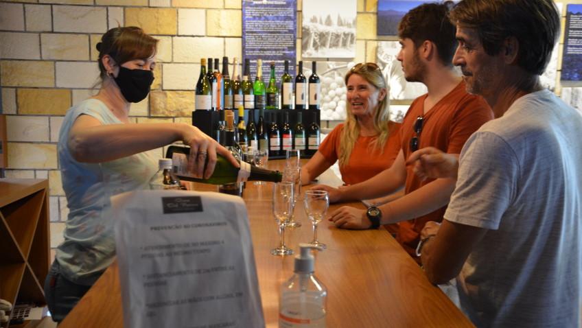 Turismo consciente: Proposta integra vindima em Santa Catarina